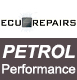 Petrol Performance Remap