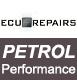 Petrol Performance Remap
